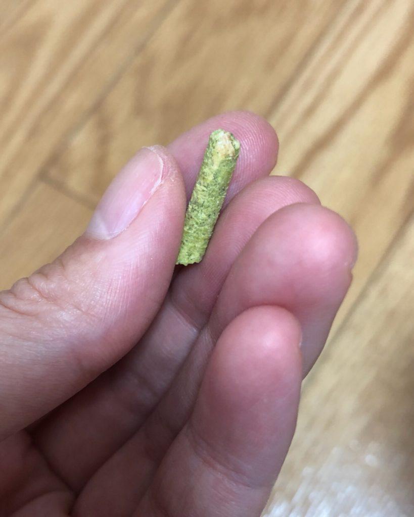 デグーの食事 副菜